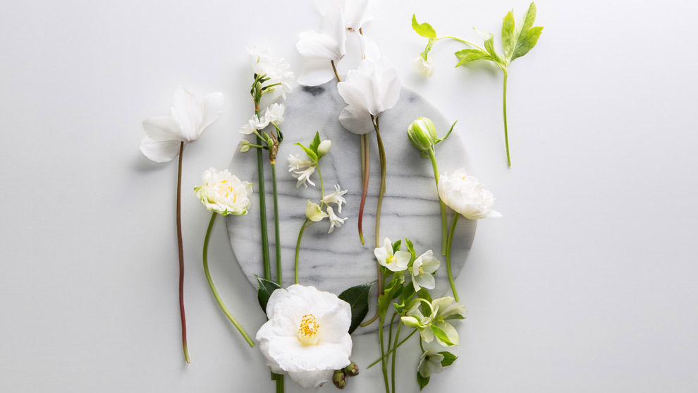 Winter blooms live with us country road fresh picks winter blooms styled on country road marble tray mightylinksfo
