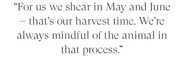 For us we shear in May and June - that's our harvest time. We're always mindful of the animal in that process.