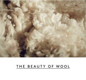 The Beauty of Wool